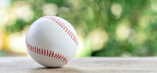 国内野球セリーグの勝敗予想